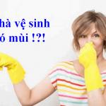 Nguyên nhân và cách xử lý mùi hôi nhà vệ sinh hiệu quả nhanh chóng.