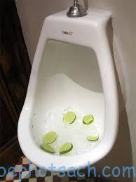 Xử lý mùi hôi nhà vệ sinh bằng chanh